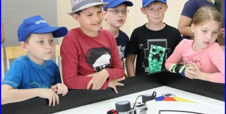 Соревнования по робототехнике «Роботы — сумо»