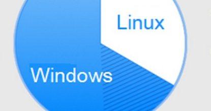 Разбивка диска для установки ОС Linux +Windows